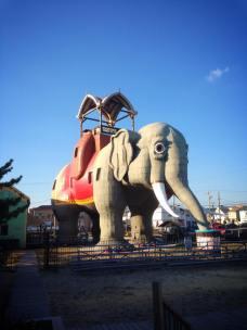au.pair.usa.lucy.l.elephant