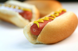 hot-dog-au-pair-usa