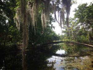 bayou-nouvelle-orleans-au-pair-usa